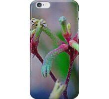 Kangaroo Paw (Toy Effect) iPhone Case/Skin