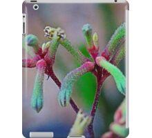 Kangaroo Paw (Toy Effect) iPad Case/Skin