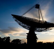 The Dish at Dawn by Dave Fitches