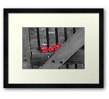 Lone Poppies  Framed Print