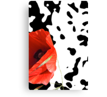 Poppy on black and white Canvas Print