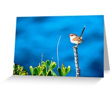 All alone on the open ocean Greeting Card