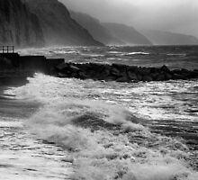 STORMY SHORE by Michael Carter