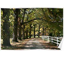 Autumn Oaks - Mylor Poster