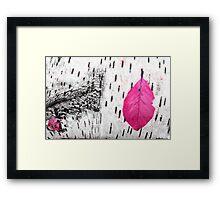Birch & Leave Framed Print