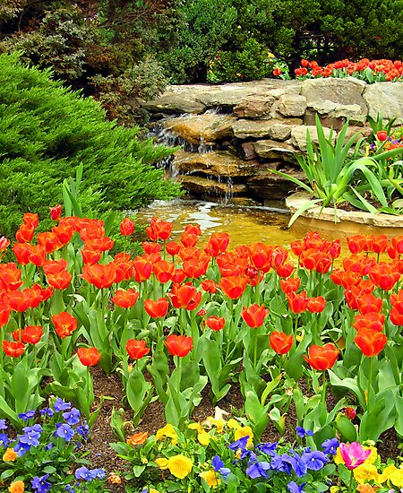 Flower and Waterfall Scene, Bowral, NSW, Australia by Peter Clements
