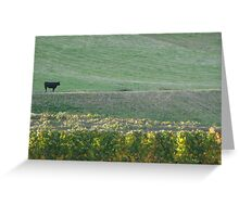 Cow in the Vineyards Greeting Card