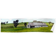 Shed in Canola Field Panoramic, Harden, NSW, Australia Poster