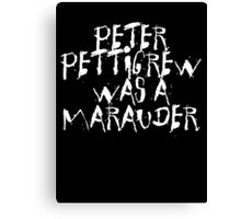 Peter Pettigrew 2. Canvas Print