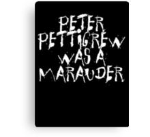 Peter Pettigrew 2. Canvas Print