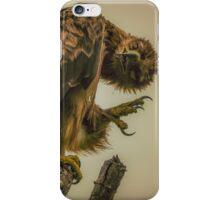 Tawny Eagle (Aquila rapax) iPhone Case/Skin
