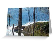 """Lakeshore Reflections"" Greeting Card"
