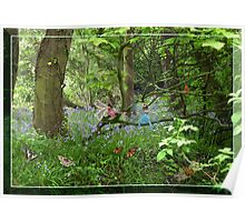 Bluebell Fairies Poster