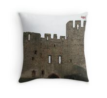 dudley castle Throw Pillow