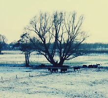 Winter - JUSTART © by JUSTART