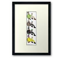 HEISENBERG EVOLUTION Framed Print