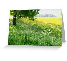 vibrant, happy meadow Greeting Card