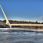 Sundial Bridge by jnisbet