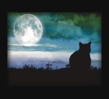 The Cat and The Moon by Angela Harburn
