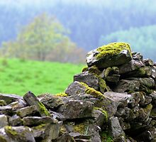 Brick Wall by berndt2