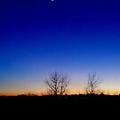 Dusk Moon by Mathew Woodhams