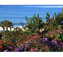 Purple Ocean View Photographic Print