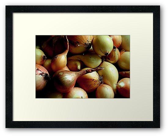 Onions  by Stephen Thomas
