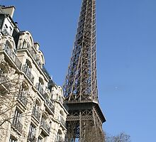 View of the Eiffel Tower by haley-cat