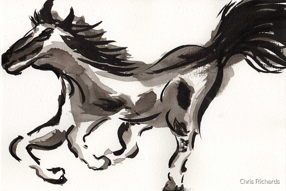 Horse study by Chris Richards