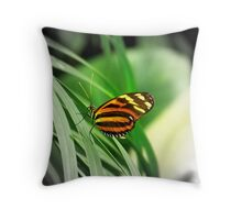 Tiger Butterfly Throw Pillow