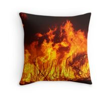 Spirited Cane Fire Throw Pillow