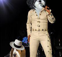 ♪ ❤ 。◕‿◕。 ☀ ツ U Aint Nothing But A Hound Dog ♪ ❤ 。◕‿◕。 ☀ ツ by ✿✿ Bonita ✿✿ ђєℓℓσ