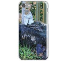 Squirrel with a walking stick iPhone Case/Skin