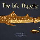 The Life Aquatic - Jaguar Shark by Kodi  Sershon