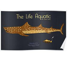 The Life Aquatic - Jaguar Shark Poster