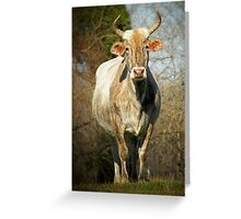 Southern Living Greeting Card