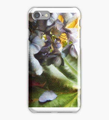 Splendor iPhone Case/Skin