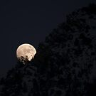 Moonrise - American Fork Canyon by Ryan Houston