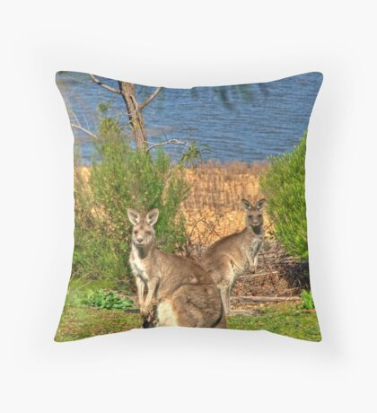 Burrinjuck Kangaroos Throw Pillow