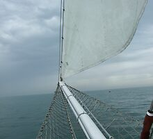 TS Royalist in the Solent,  by tilly