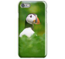 Portrait of a Puffin iPhone Case/Skin