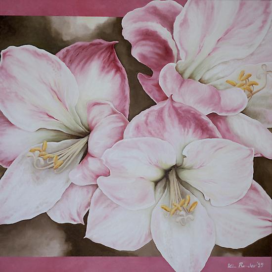 Amaryllis by Kim Bender