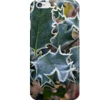 Holly's Feeling chilly.......... iPhone Case/Skin