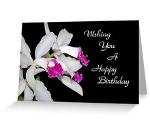 Orchids Birthday Card  Greeting Card