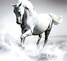 Water Horse by FeiaraFoxx