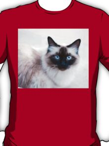 Siamese Like Rag Doll Cat T-Shirt