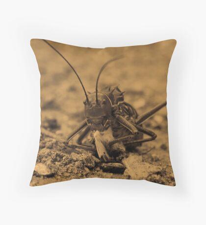Crunch!!! Throw Pillow