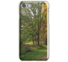 Country Road In Autumn iPhone Case/Skin