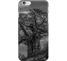 Baobab Tree (Adansonia digitata) iPhone Case/Skin