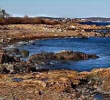 Rocky Shore by artbylisa